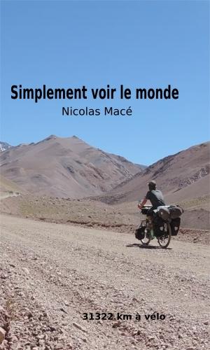 Nicolas Macé-couverture.jpg