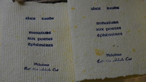 Baude-Miniatures-couverture.JPG